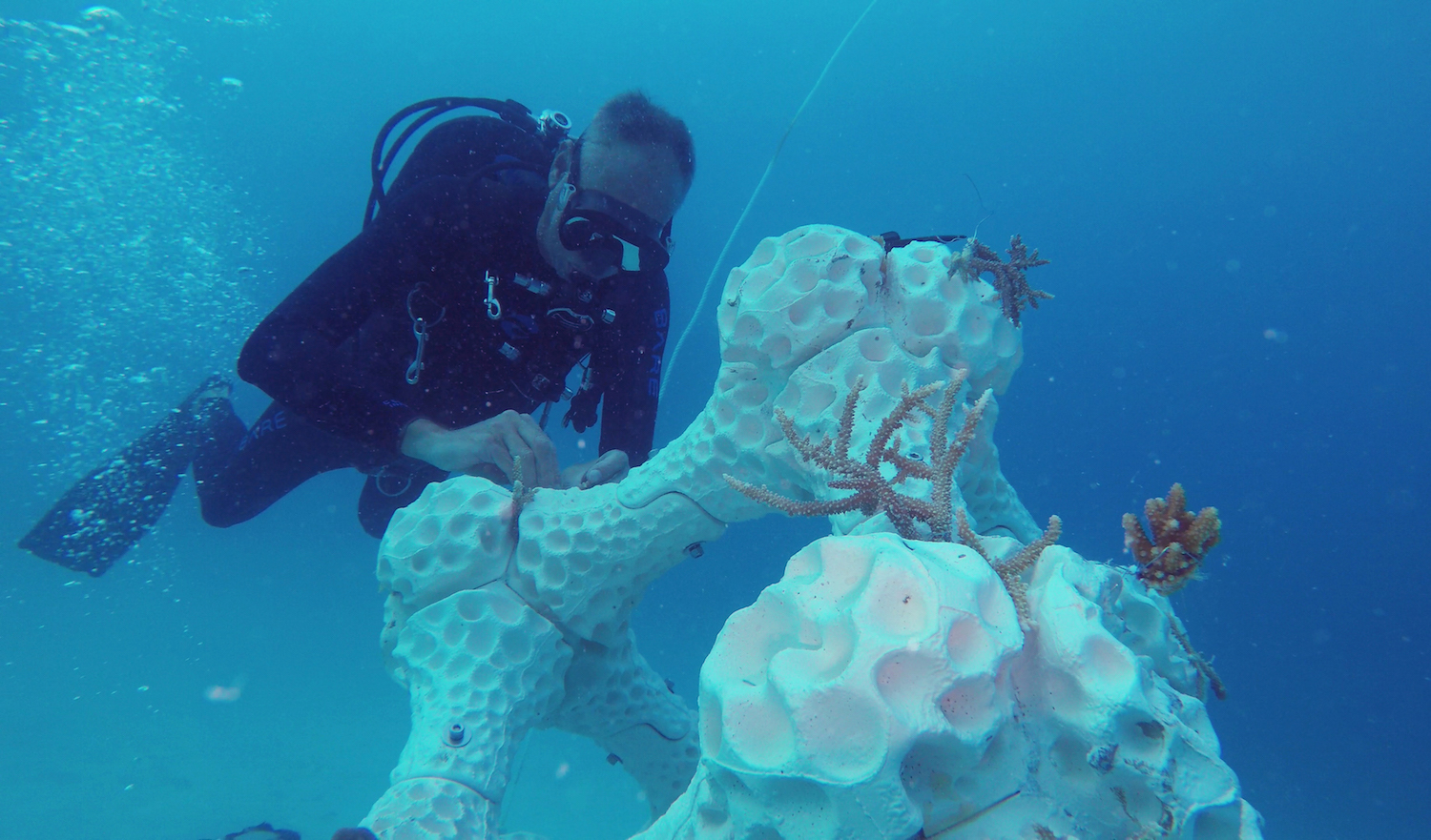 Summer Island Maldives' 3D reef makes its way to the Guinness list of world records Image